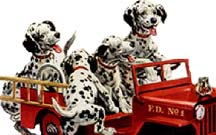 puppies-dalmation-around-fire-engin-car